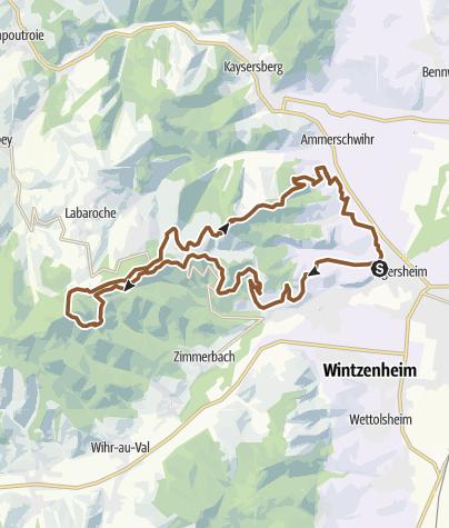 Carte / Weinberge Colmar