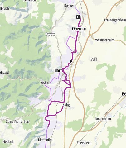 Carte / Le piémont du Mont Sainte Odile Obernai, Barr, Dambach la Ville
