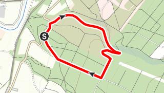 Karte / Steinkrug-Rundweg (Bo 1)